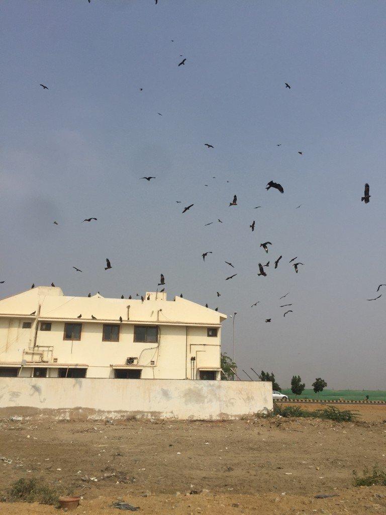 karachi 232